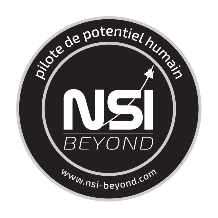 patch_nsi-beyond-PILOTE DE POTENTIEL HUMAIN