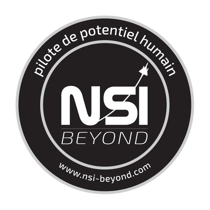 patch_nsi-beyond-PILOTE DE POTENTIEL HUMAIN